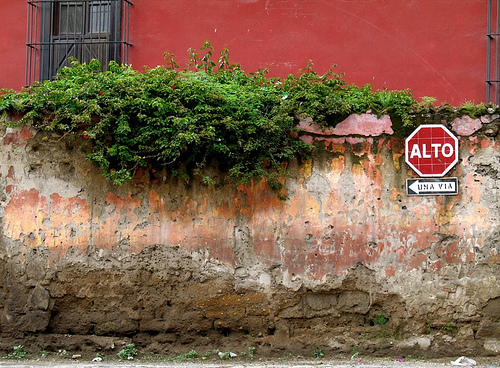 Real Old Wall with Alto Sign