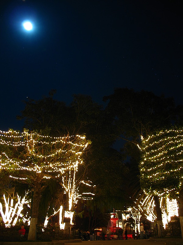 La Antigua Guatemala's Central Park Dressed for Christmas