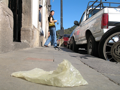 Public Enemy Number 1: Plastic Bag