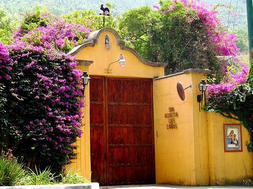 Entrance to Finca San Agustin Las Cañas