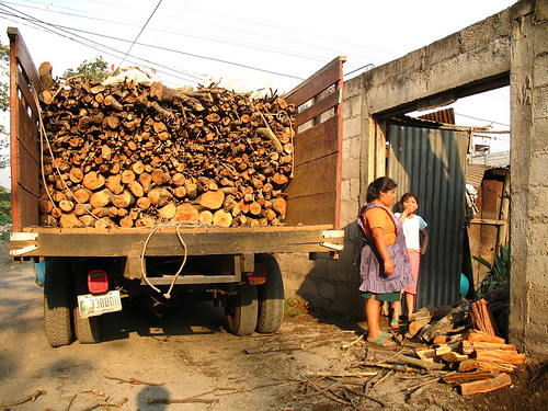 Wood Fuel  Home Delivery