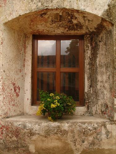 Window's Vista in La Antigua Guatemala