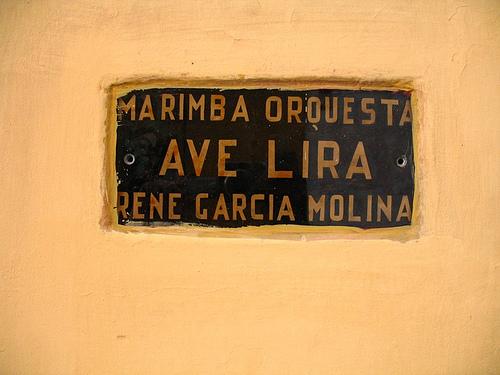 Marimba Orquesta AVE LIRA Sign
