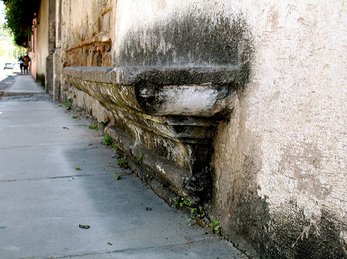 Walls That Grow Benches