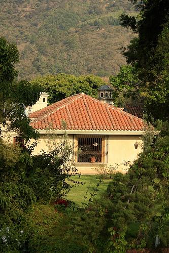House Inside Coffee Plantation