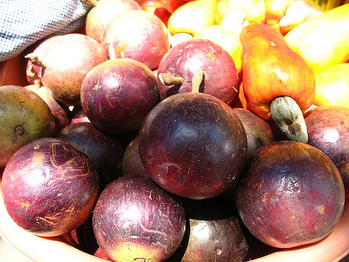 Guatemalan Fruit: Caimito