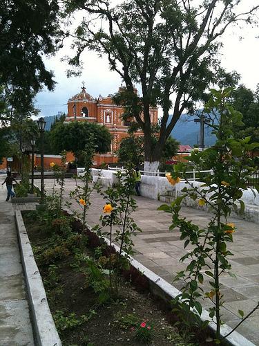 New Gardens in San Pedro Las Huertas by Rudy Girón