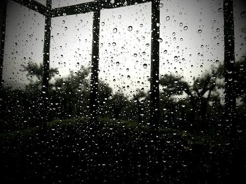 Rainiest Year Ever by Rudy Girón