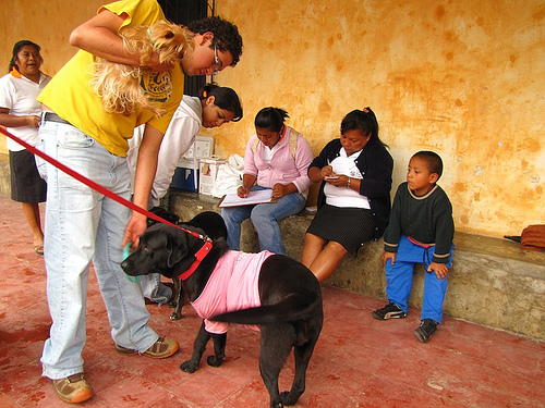 Anti-Rabies Vaccination Campaign by  Rudy Girón