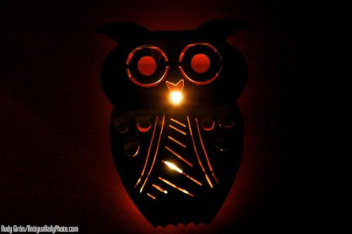 Illuminated Owl by Rudy Girón