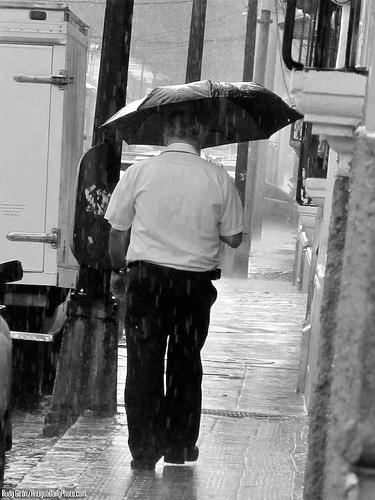 Rainy Season Typical Vista by Rudy Girón