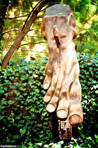 Bigfoot Sightings in Antigua Guatemala