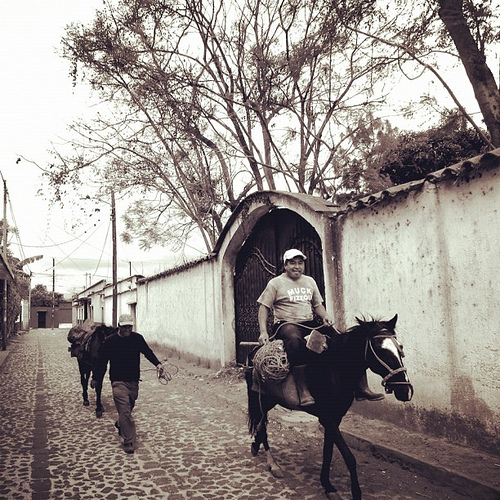 The theme for today is pairs. Let's start with a pair of campesinos on their way to work.