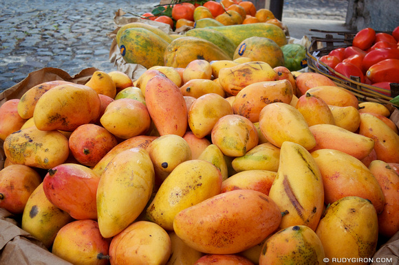 Rudy Giron: AntiguaDailyPhoto.com &emdash; The Mango Season 2013 Is Already Here