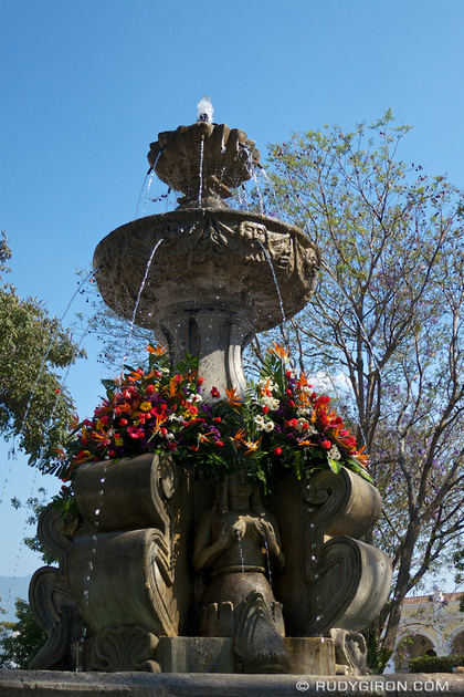 Rudy Giron: AntiguaDailyPhoto.com &emdash; Flowers on Fountains Around Parque Central