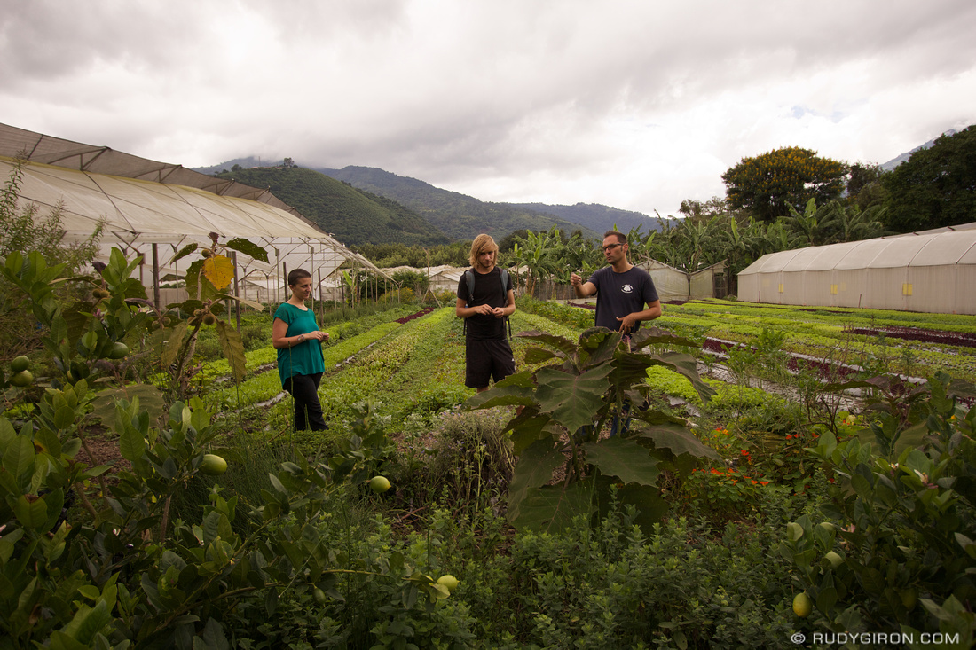 Rudy Giron: Organic Tours at Caoba Farms, Antigua Guatemala &emdash; Organic Tours at Caoba Farms
