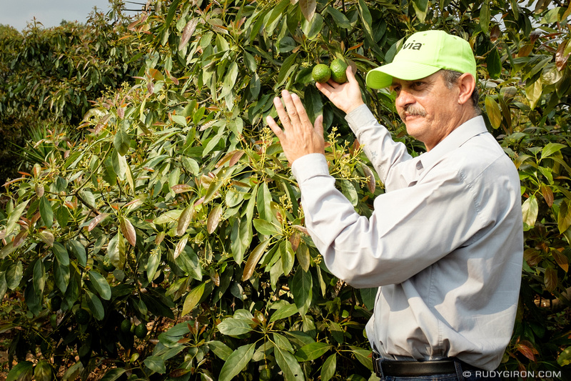 Rudy Giron: The Avacado Tour of Antigua Guatemala &emdash; The Avacado Tour of Antigua Guatemala-7